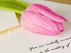 wedding-stationery-hampshire-c6ef2fc8b1e2cf2a1677fe0db134abd3bd167221